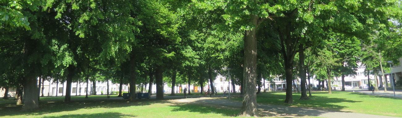Basel nachhaltig entdecken