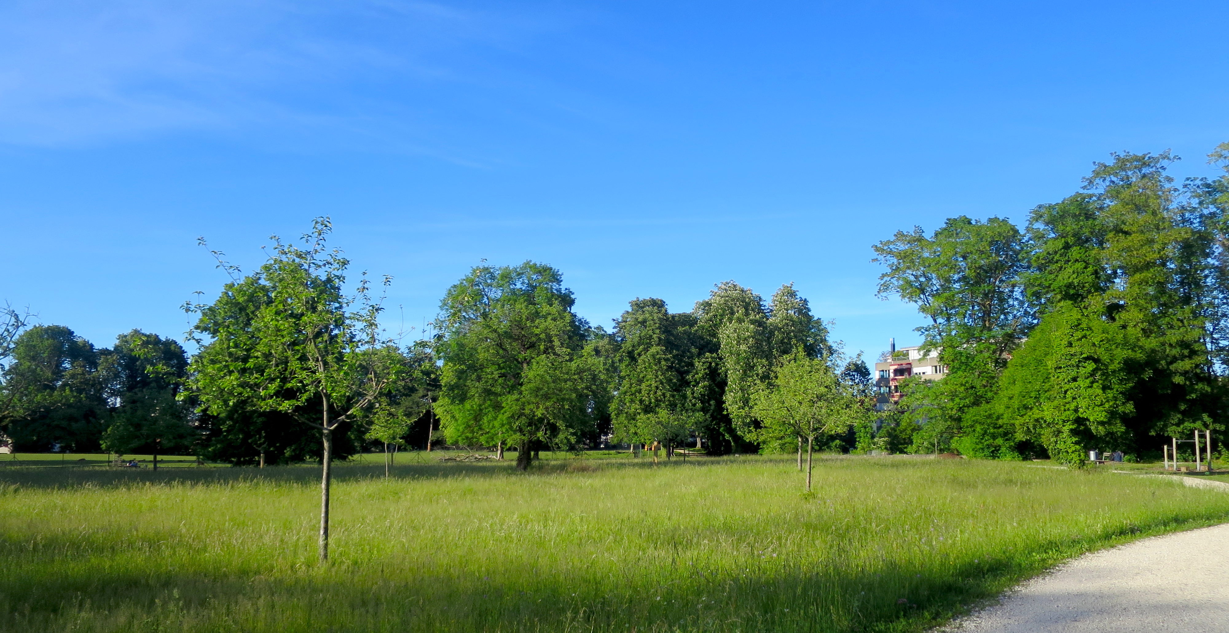 Schwarzpark